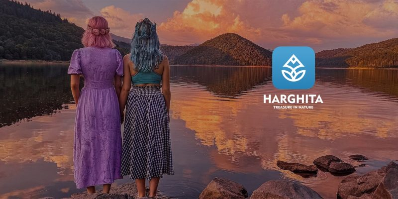 case study visit harghita app
