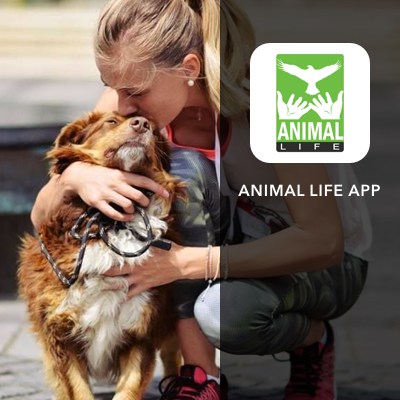 Animal Life - community app